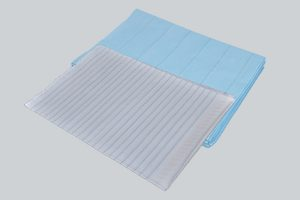 Disposable Bedsheets
