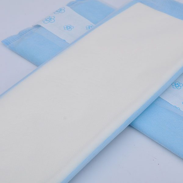 Disposable Pantyliners